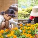お花いっぱい大崎