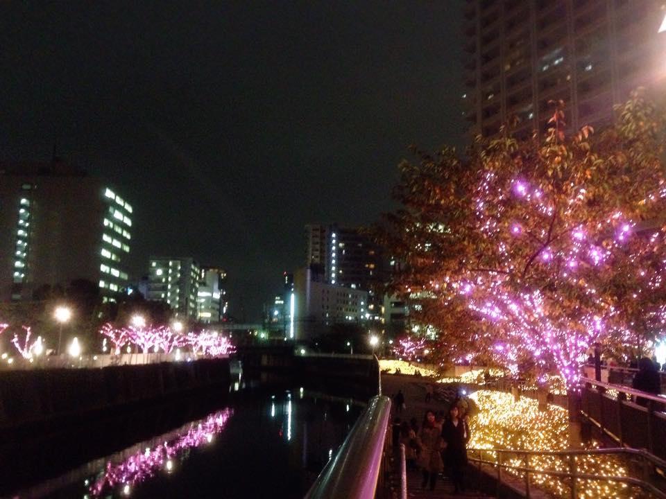 fuyunosakura-4