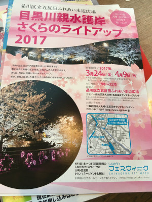 gotanda_sakura