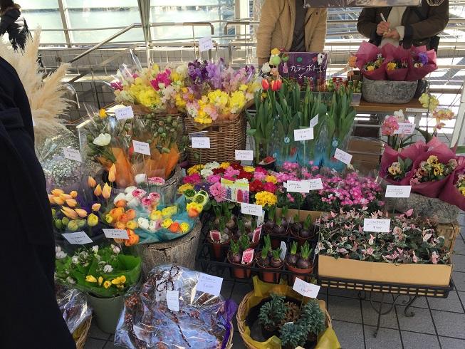季節のお花はいかがですか?